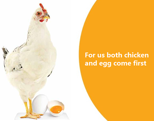 Poultry and poultry feed, lutein extracts, natural colours