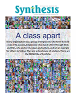 Synthesis News-letter April- June 2013